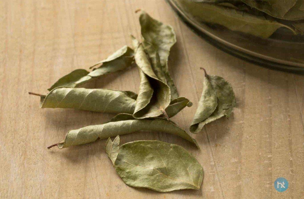 cara mengusir tokek menggunakan daun kering