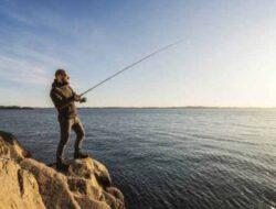 Jenis Umpan Ikan Laut