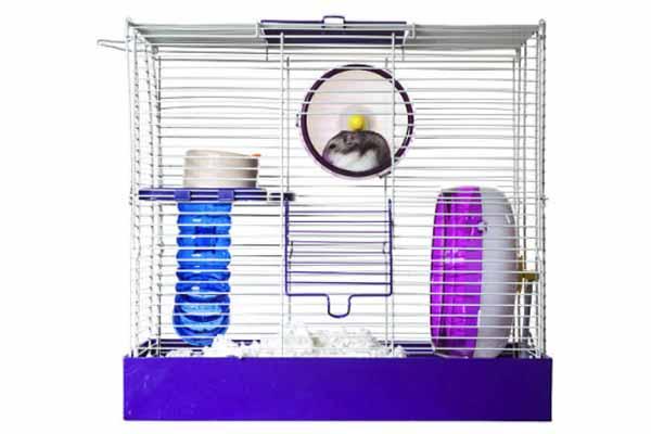 Kandang Hamster 2