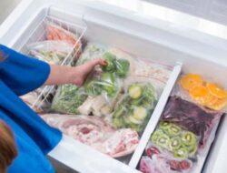 Peluang Usaha Frozen Food